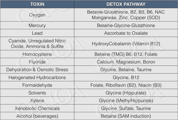 table image showing breakdown of toxins and detoxification pathways - Copyright © Ola Loa, 2016